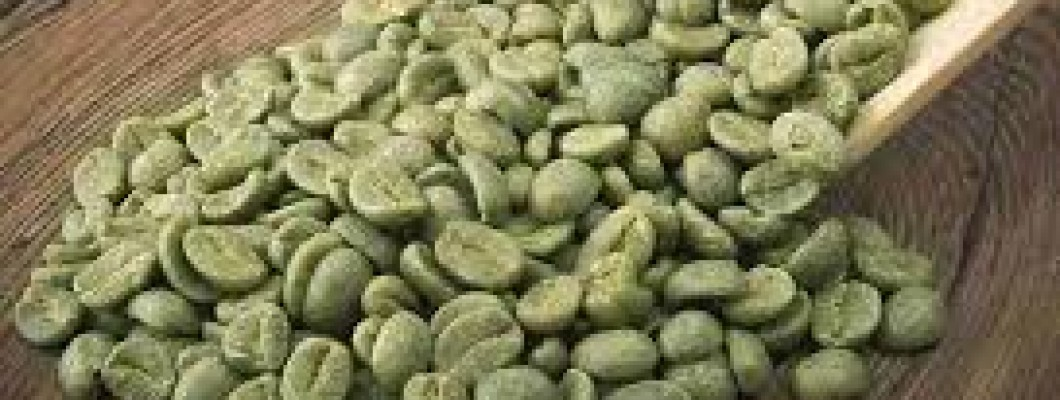 The Definitive Guide To green coffee bean for weight loss
