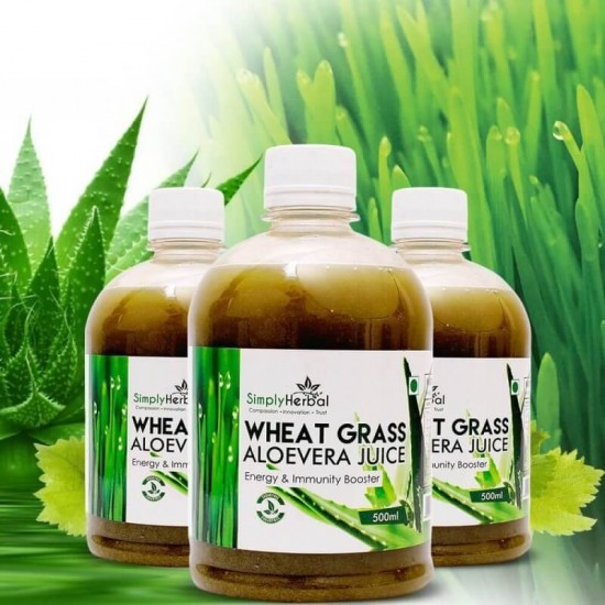 Wheatgrass With Aloe Vera Juice (Blood Purifier, Energy, Immunity Booster, Digestion and Detoxification) 500ml (3 Bottles)